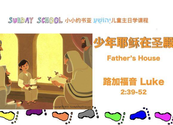 少年耶穌在聖殿